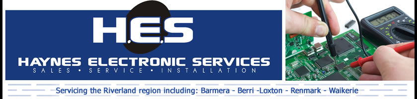 Haynes Electronic Services